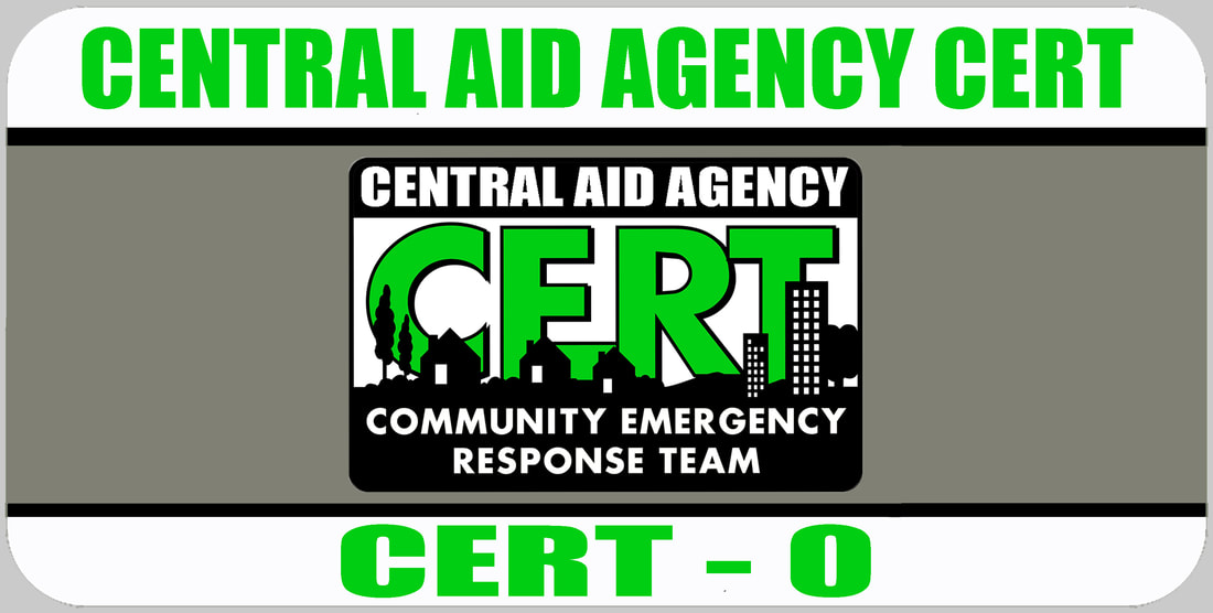 CERT 0 Rank Badge