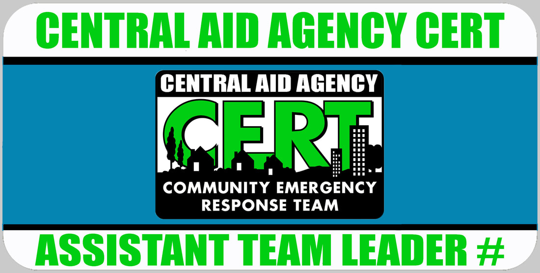Assistant CERT Team Leader Badge