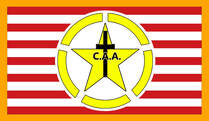 The Flag of the Central Aid Agency Christian Service Army